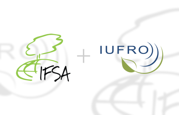 IFSA Internship at the IUFRO HQ, Vienna | IFSA
